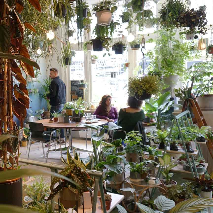 """Die Anlaufstelle für alle Urban Jungle Fans und Blogger : """"Wildernis"""" in Amsterdam"""