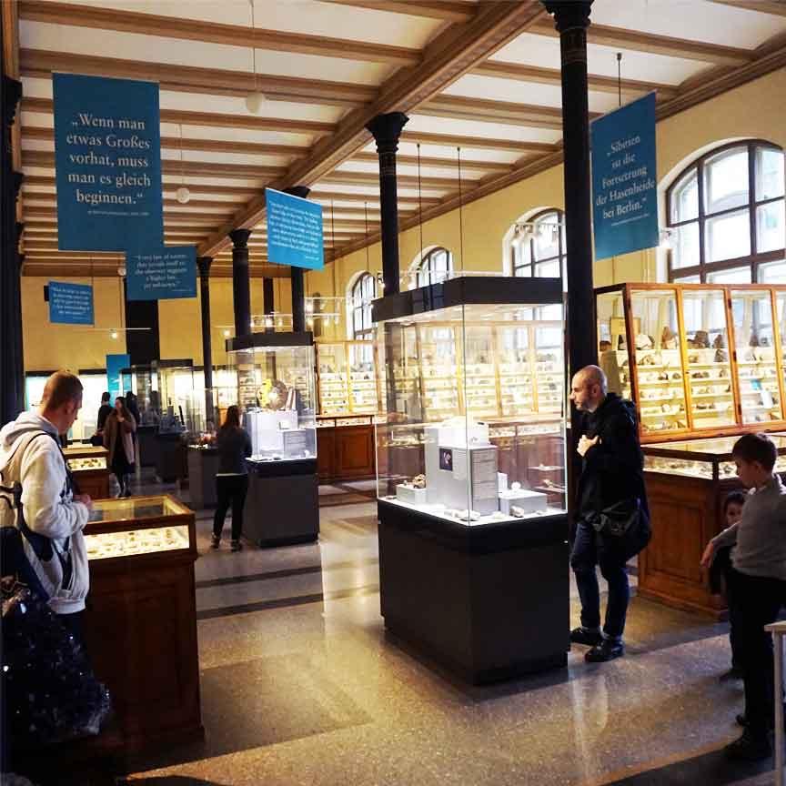 Die Fazination der Mineralien : ... unterwegs im Naturkundemuseum Berlin (Mineralien &Gesteine-Sammlung)